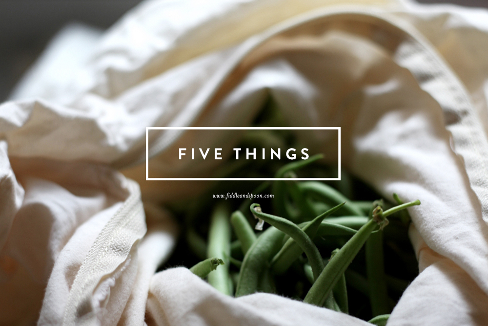 FS-FiveThings1
